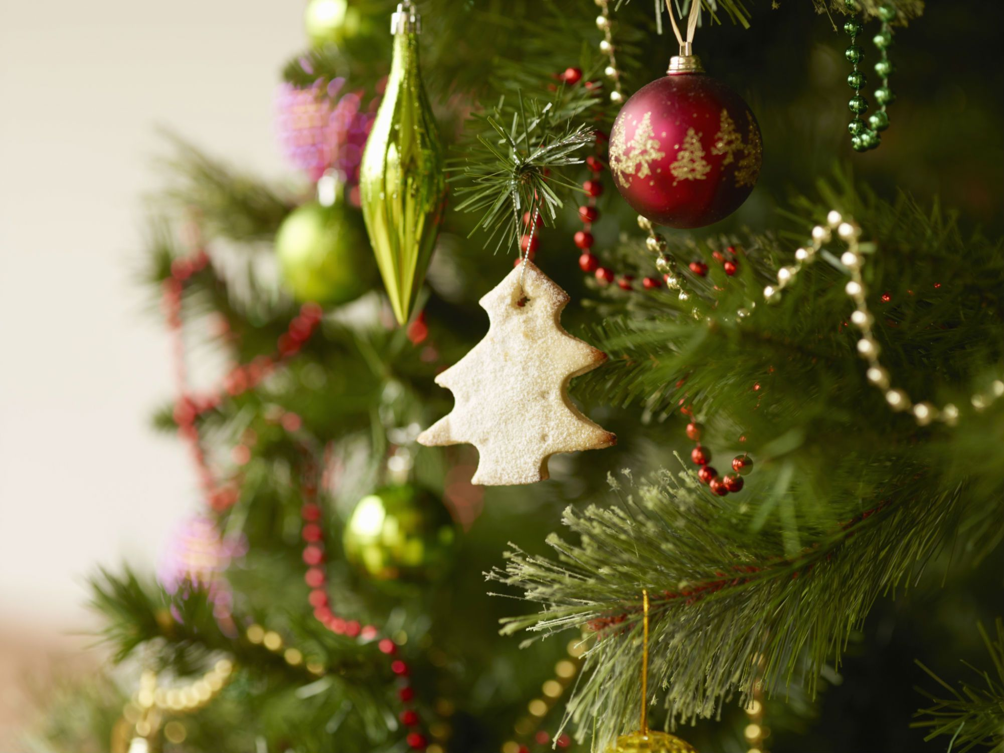 Does the 12 days of christmas have a hidden meaning 12 trees of christmas biocorpaavc