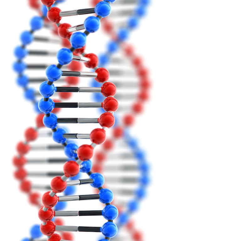 El ADN prueba parentesco para green card