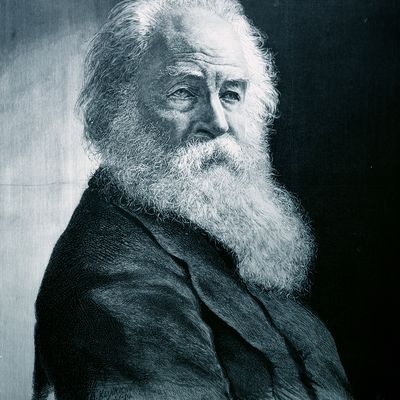 a biography of american poet walt whitman Walt whitman: the first modern american poet following the american civil war, the poetry of the united states showed signs of becoming much more distinctly american, in style, theme, and.