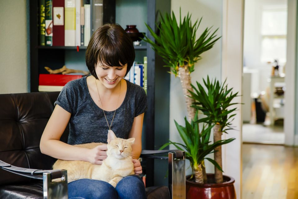 woman petting cat in living room