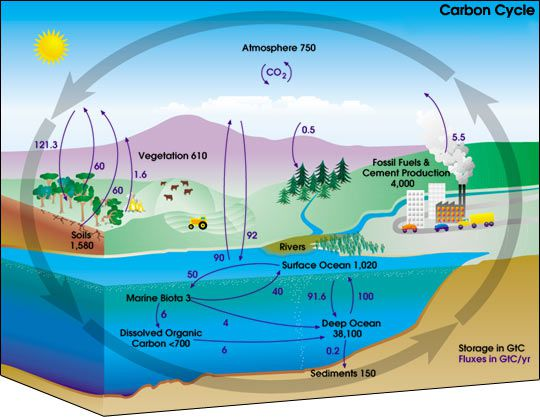Why is the carbon cycle important the carbon cycle describes the storage and exchange of carbon between the earths biosphere atmosphere hydrosphere and geosphere nasa ccuart Image collections