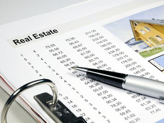Real Estate Portfolio Sheet