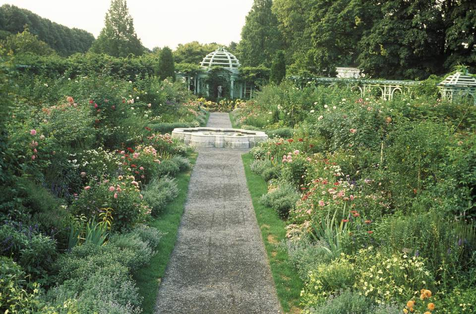 double summer borders either side of path leading to arbour with statue focal point old westbury garden, new york state usa