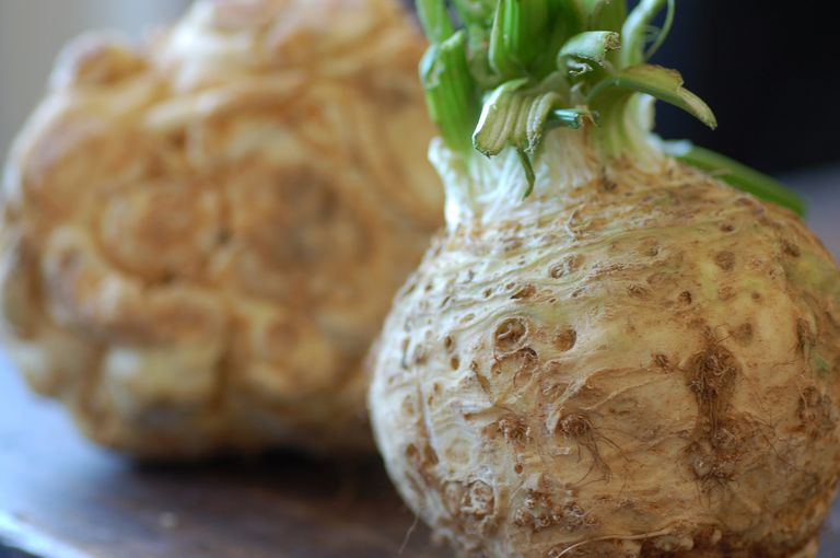 celariac (celery root)