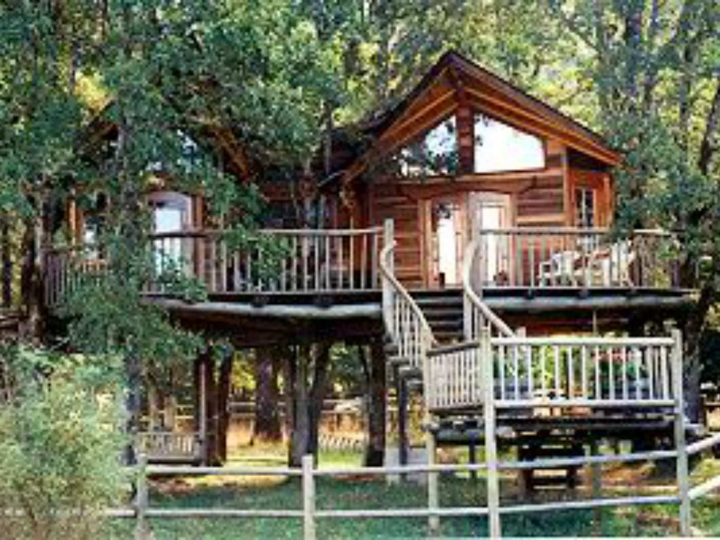 Treehouses Where You Can Stay  KidFriendly Lodging