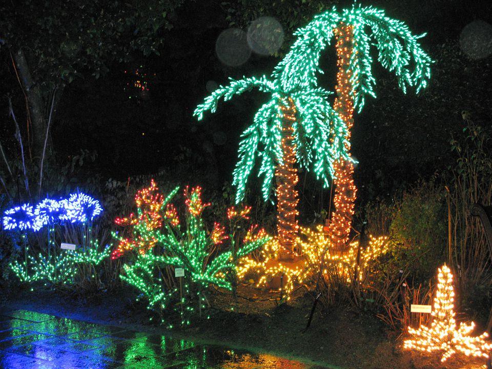 Christmas Lights Near Bellevue