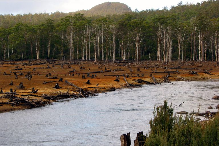 Timber logging along a river in Tasmania, Australia.