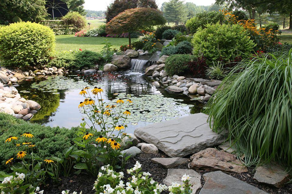 the perfect backyard