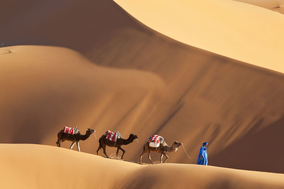 Essential Facts and Information About Merzouga, Morocco