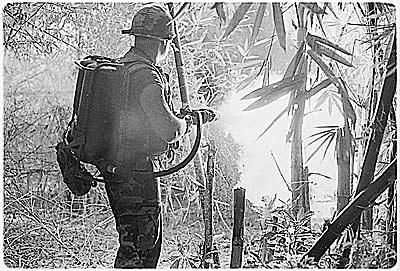 A solider clears an area of Vietnam using his flamethrower.