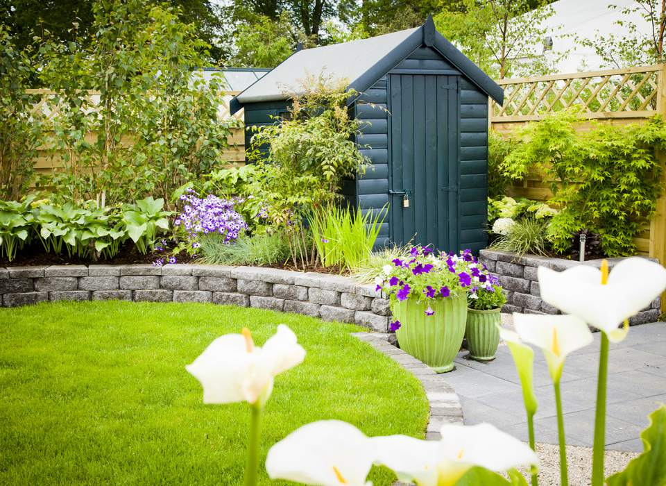 Green shed set in a garden with plants, wall, and fence.