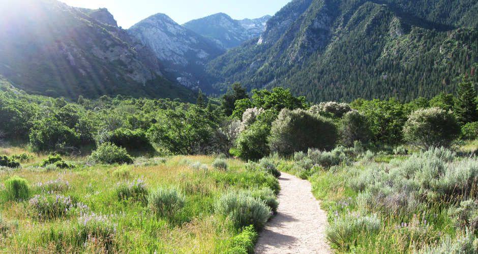Bell Canyon Hiking Trail, Utah