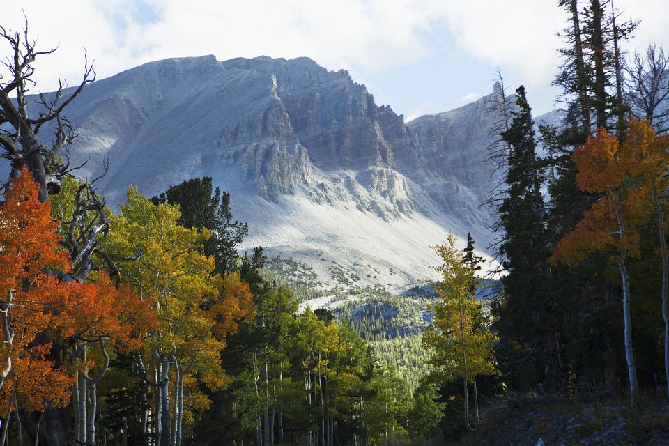 a camping trip into the depths of the sierra nevada mountains Sawtooth ridge is a breathtaking area in the eastern sierra nevada mountains each day of this trip will provide you with we will venture into the.