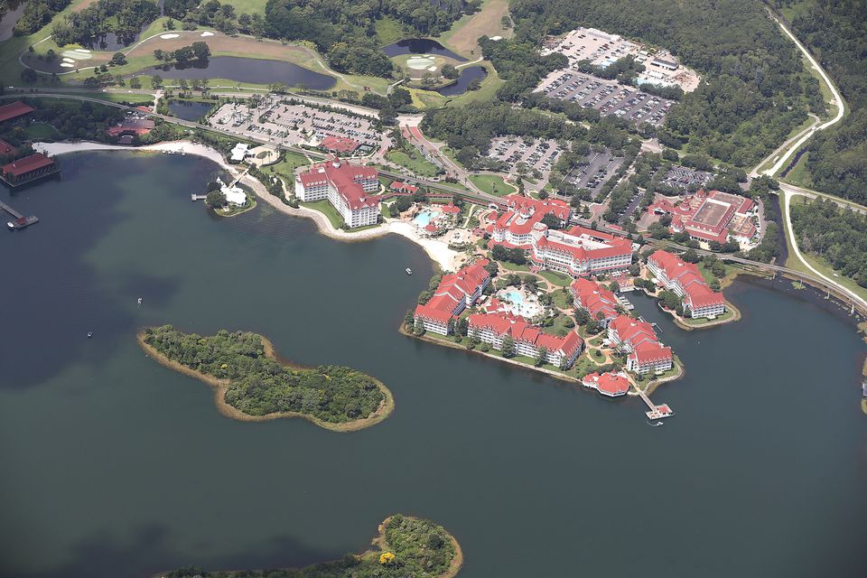 Alligator Snatches 2-Year-Old Boy From Lake At Disney Resort