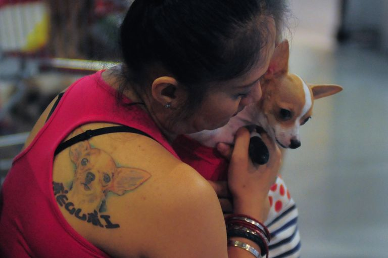 Woman and her chihuahua