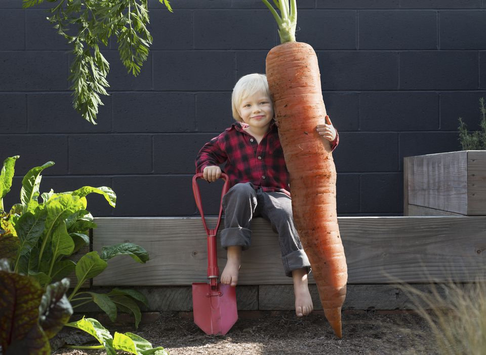 Young organic farmer posing with giant carrot