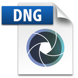 Picture of the DNG file icon
