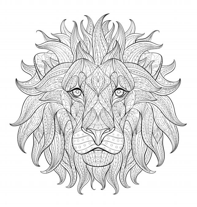 a face of a lion adult coloring page