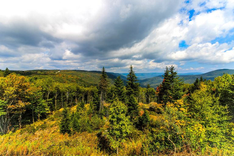 Highland Scenic Highway, Pocahontas County, WV