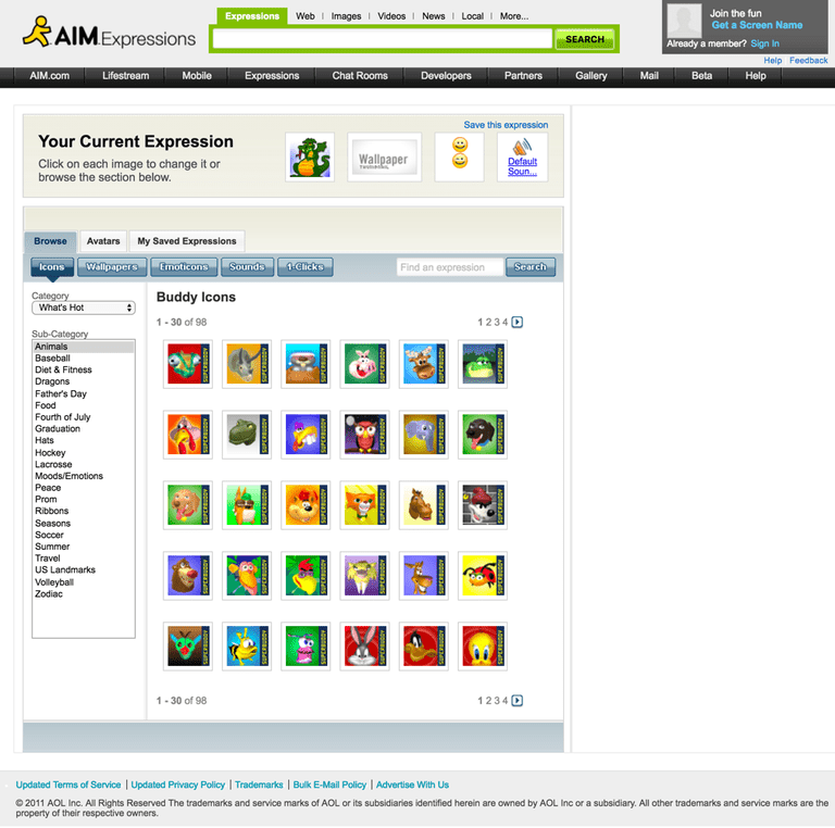 AIM Expressions web page