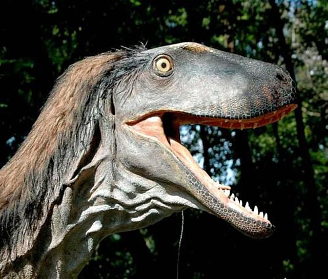 Dinosaurs Without Bones Dinosaur Lives Revealed By Trace Fossils