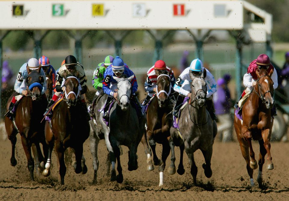 The start of the Breeders Cup Juvenile Fillies, part of the Breeders Cup World Thoroughbred Championships on October 30, 2004 at Lone Star Park in Grand Prairie, Texas.