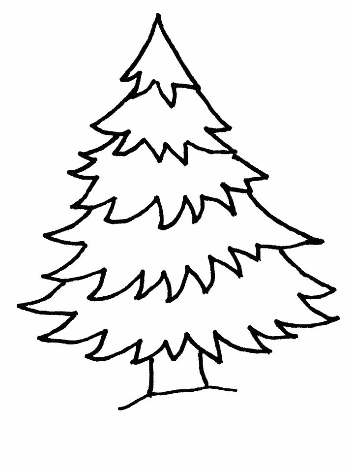 christmas tree coloring pages at coloringws a pine tree