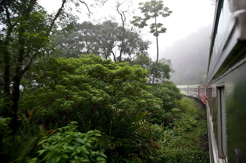A view of the Serra Verde Express train. The train Travels along 110 km of a railroad with 125 years of history through the largest preserved area of Brazil's Atlantic forest