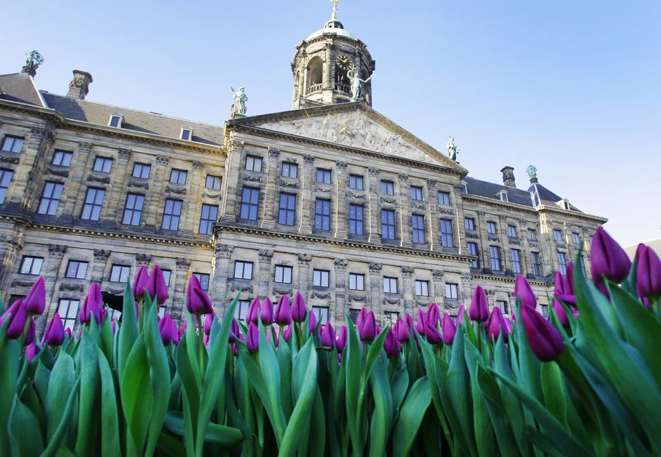 Dutch National Tulip Day in Amsterdam