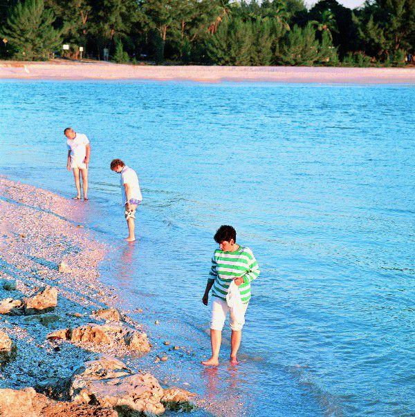 Sanibel Island Shelling