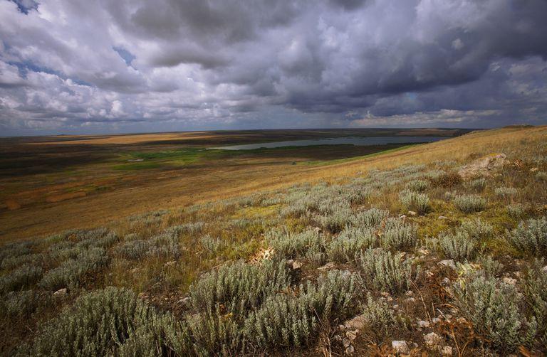 Steppe landscape, Bagerova Steppe, Kerch Peninsula, Crimea, Ukraine, July 2009. WWE BOOK