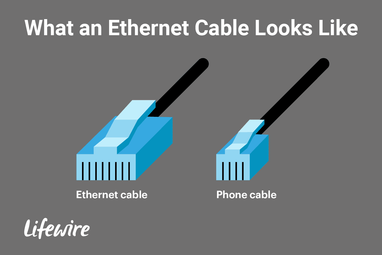 An illustration of an Ethernet cable next to a phone cable to show how an Ethernet cable is larger.