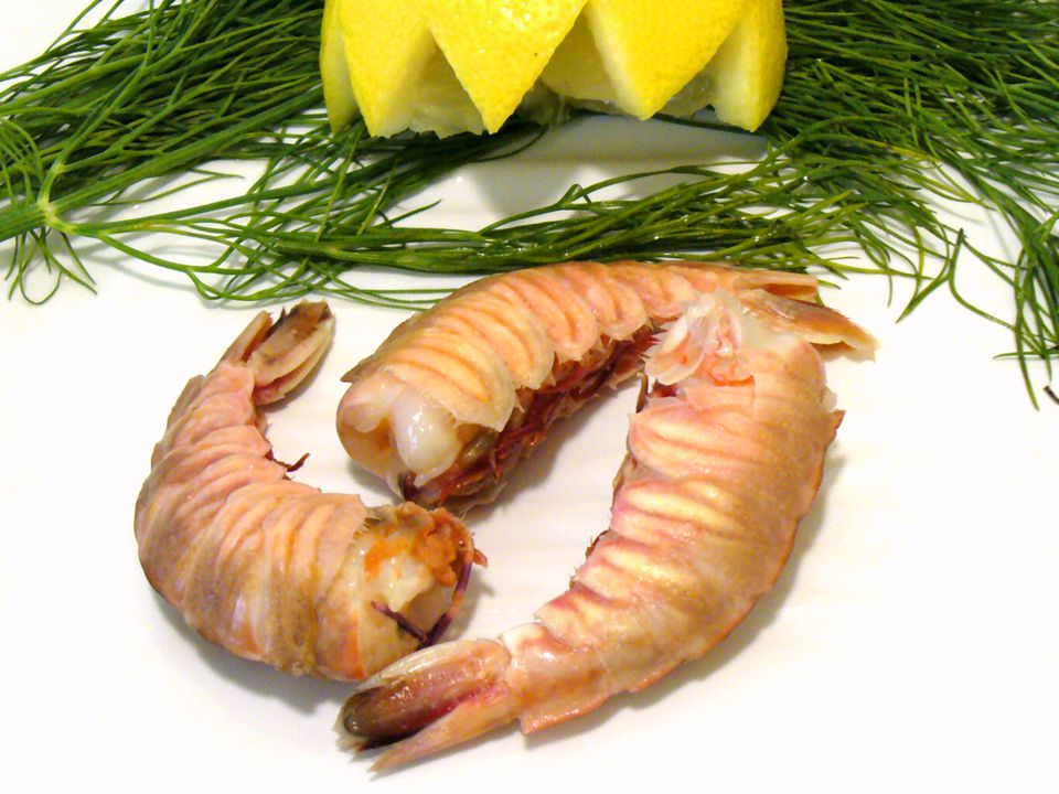 rock, shrimp, recipes, shellfish, seafood, receipts