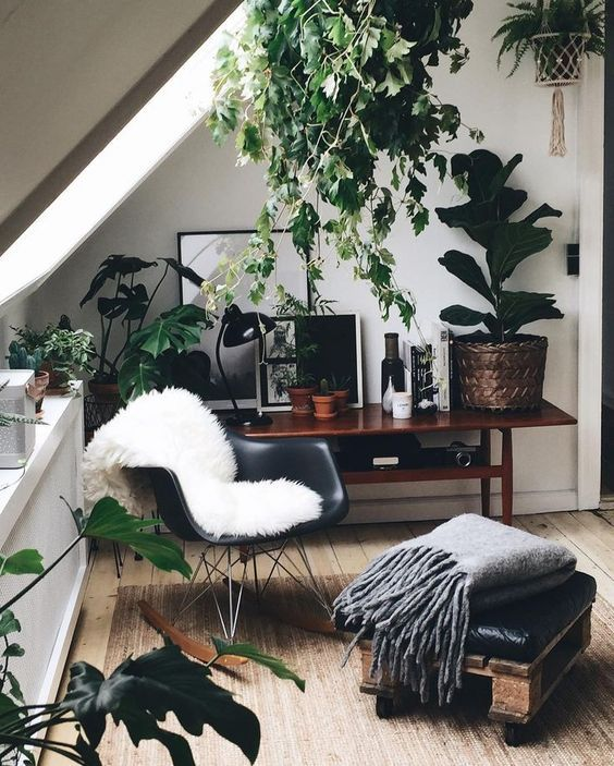 office with lots of greenery