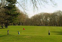Golfing in Queens