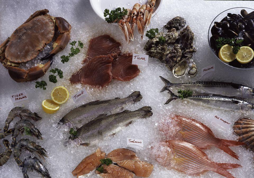 Fish and Shellfish Counter