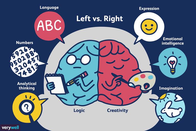 Illustration of Left vs. Right Brain