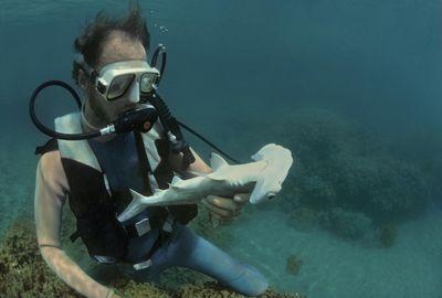 How Much Money Can a Marine Biologist Make