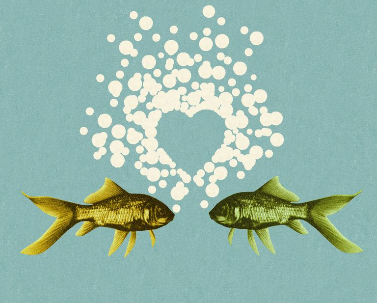 Two Fish and Bubble Heart