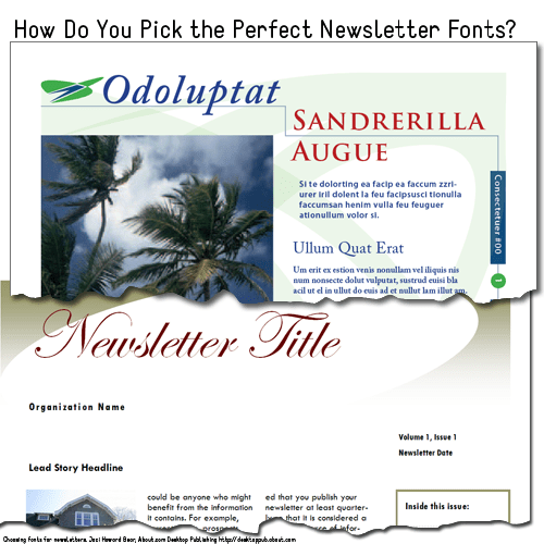 Some sample newsletter templates with fonts