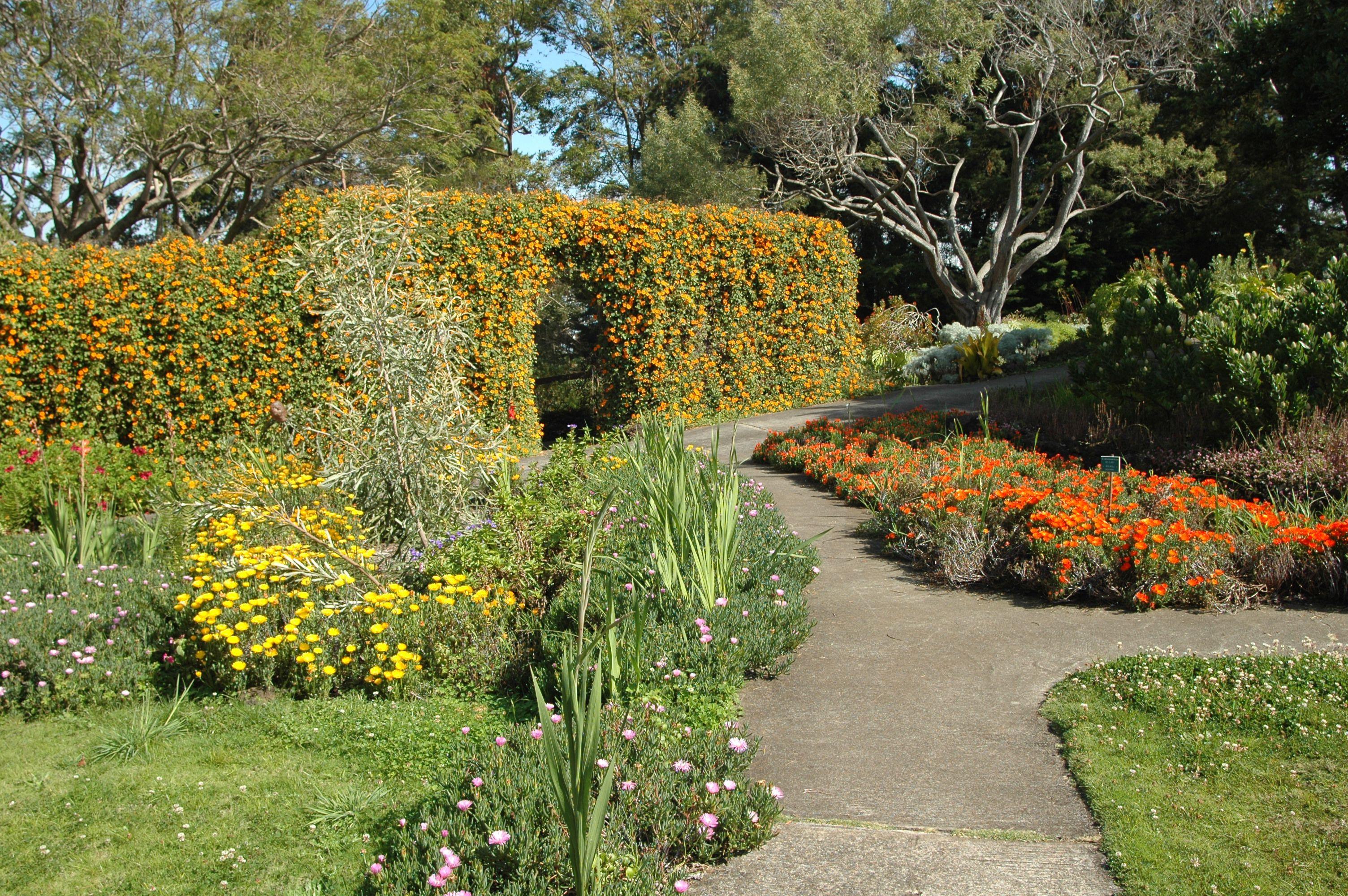 Maui\'s Botanical Gardens Show Hawaii\'s Floral Spendor