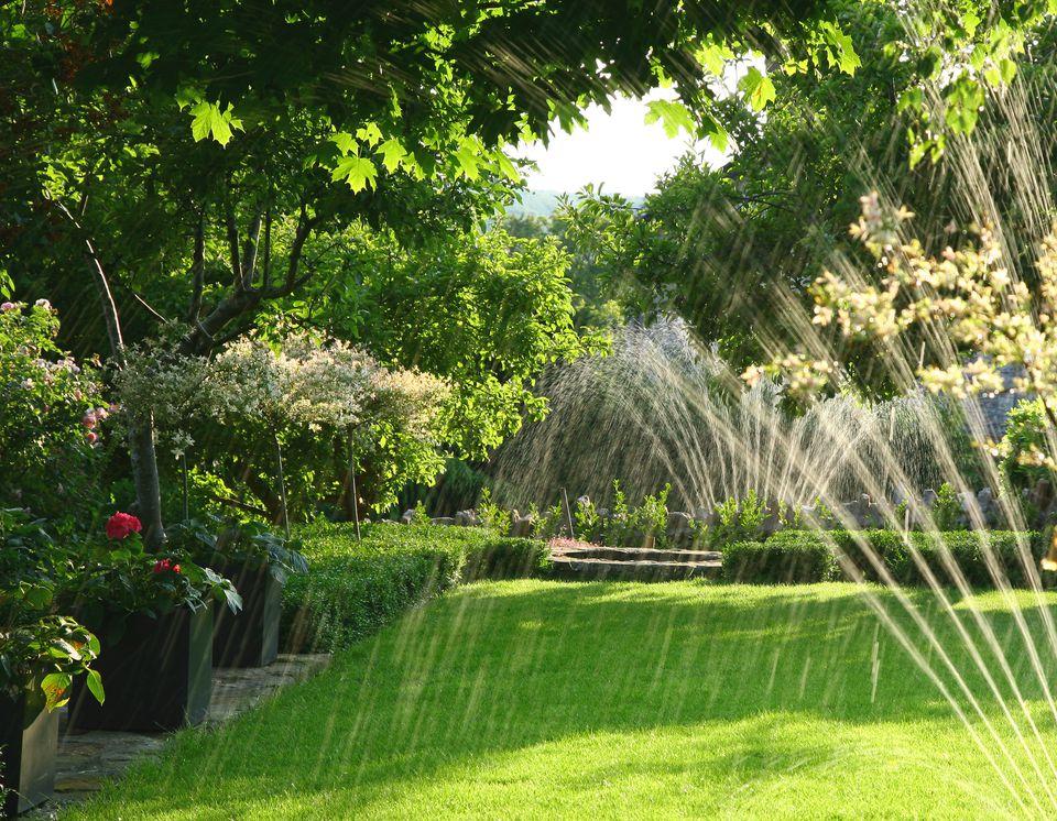 Sprinkler on yard