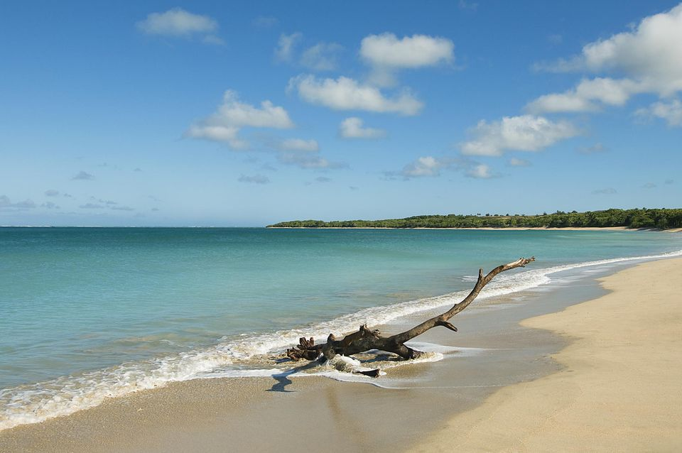 Natadola beach, Viti Levu island, Fiji Beach