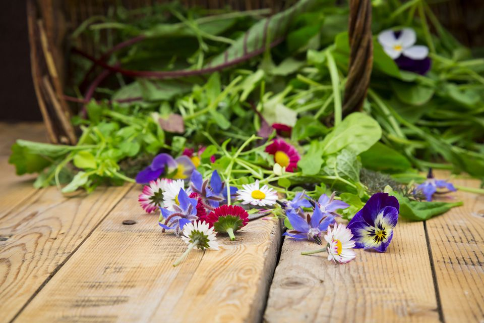 A number of flowers are actually safe to eat