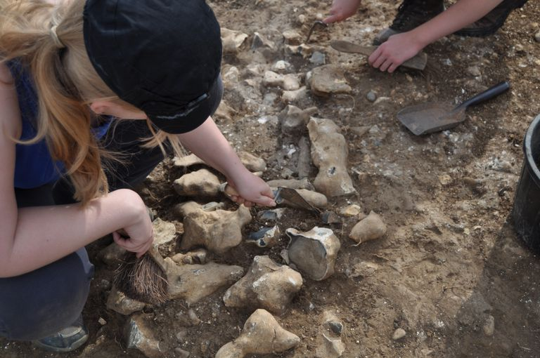 Archaeology FieldWork in Basingstoke