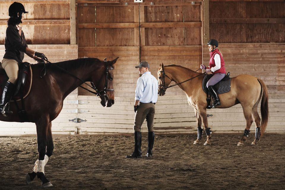 Young man standing between to riders and their horses in a training stable