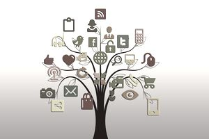 A tree connecting to various social media types