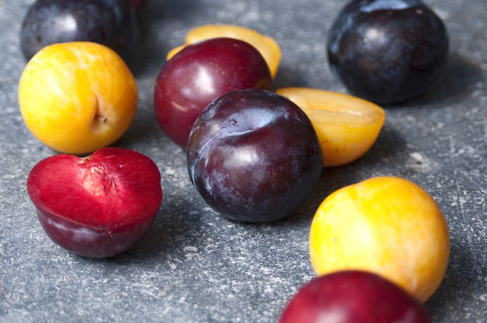 plums, pluots, apricots, fruit, recipes, storage, food, cooking, receipts