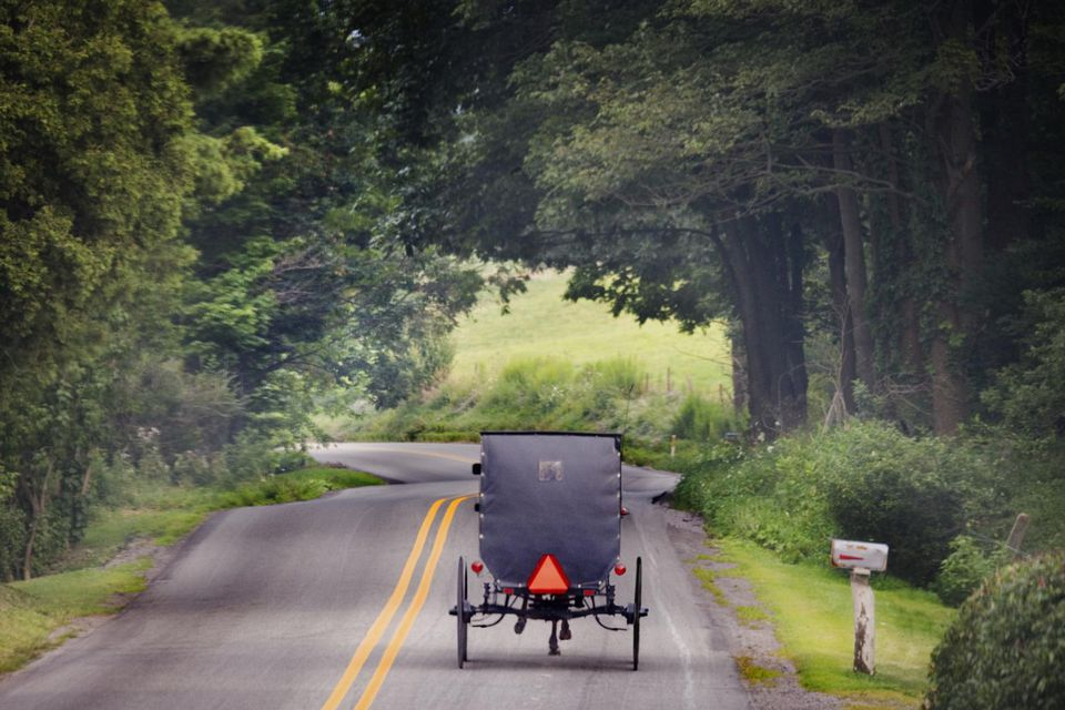 Amish carriage on country road