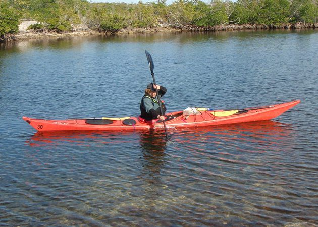 The Different Types Of Kayaking Strokes